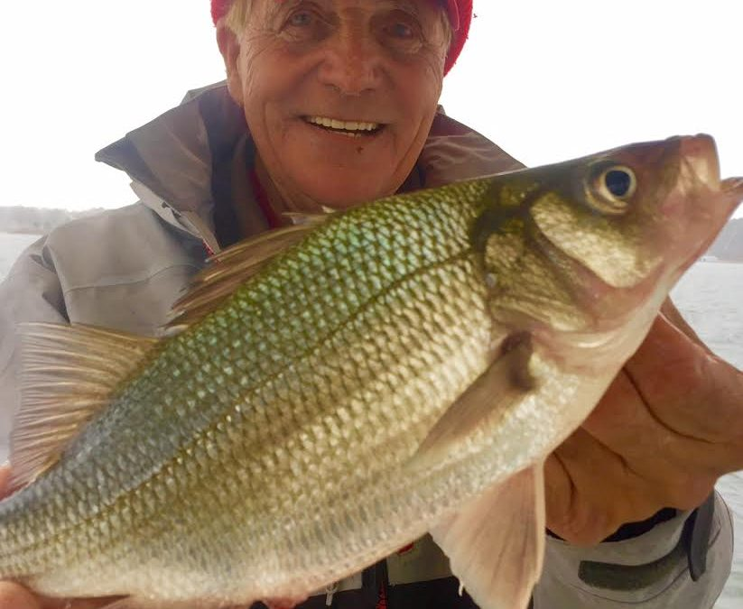 Fishing Report: January Fishing Forecast, January 1, 2017